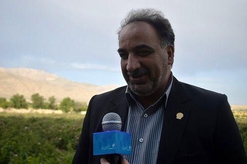 استان فارس دومین تولید کننده نهال است