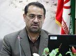 ٩٤٨ هکتار از منابع طبیعی فارس جنگل کاری می شود