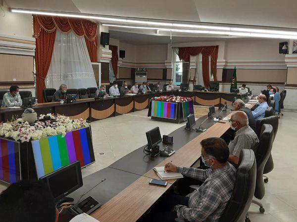 نوزدهمین جلسه کمیته فنی بذر استان قزوین برگزار شد