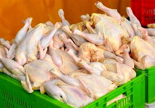 ۱۱۰ هزار تن گوشت مرغ در کردستان تولید میشود