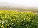 ضرورت مشارکت مردمی برای حفاظت از منابع طبیعی