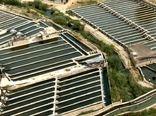 چشم امید صنعت آبزی پروری به حمایت دولت