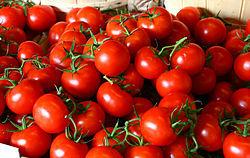بازار گوجه فرنگی با خرید حمایتی تعاون روستایی کنترل شد