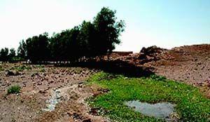 زاویههای ناپیدای بحران آب /200 دشت در بحران مطلق آب