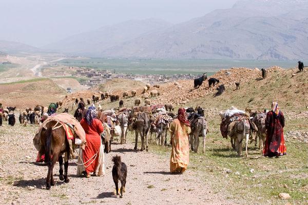 عشایر آذربایجان غربی 500 میلیارد ریال ضرر کردند