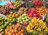 تولید 165 هزار تن میوههای گرمسیری در کشور