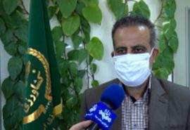 مبارزه با ملخهای صحرایی در بیش از ۴۲ هزار هکتار اراضی