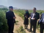 بازدید سرپرست معاونت  امور زراعت در وزارت جهاد کشاورزی از رهاسازی آب سد درودزن زرقان