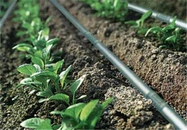 یکهزار هکتار زمین کشاورزی در اردستان به آبیاری نوین مجهز شد