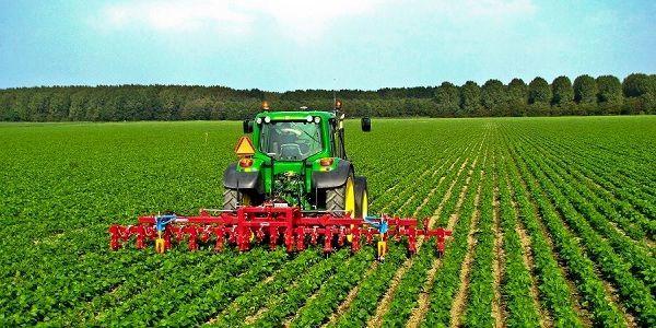 توسعه کسب و کار کشاورزی فقر غذایی را به امنیت تبدیل میکند