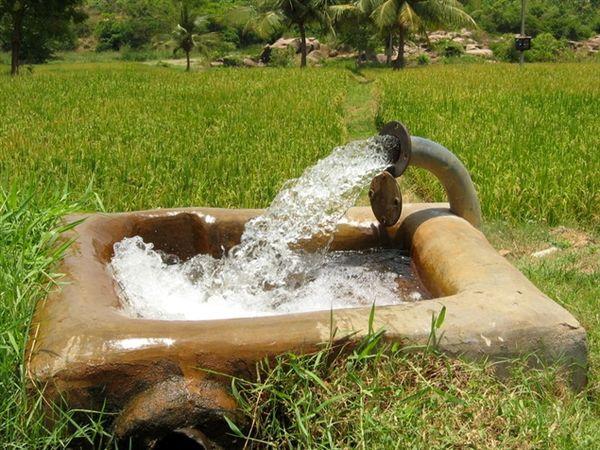اعتبارات ملی آب و خاک بخش کشاورزی بوشهر سه برابر شد