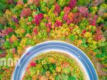 رنگینکمان پاییزی در نیوهمپشایر