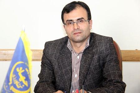 تولید بیش از هزارتن عسل در استان تهران