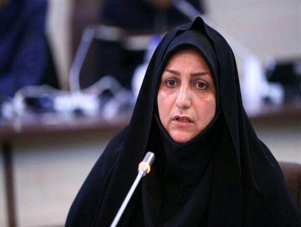 6600 تن کلزا از کشاورزان استان قزوین خریداری شد