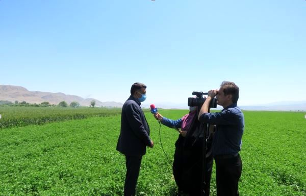 اجرای طرح آبیاری تحت فشار در سطح 3200 هکتار از اراضی کشاورزی شهرستان مانه و سملقان