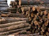 کشف چوب قاچاق در قزوین