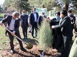 حفاظت منابع طبیعی ارزشمندتر از اجرای پروژه های اجرایی و اصلاحی است