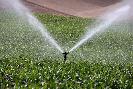 بهره برداری از 23 طرح کشاورزی در قم با اعتبار 388 میلیارد و 612 میلیون ریال