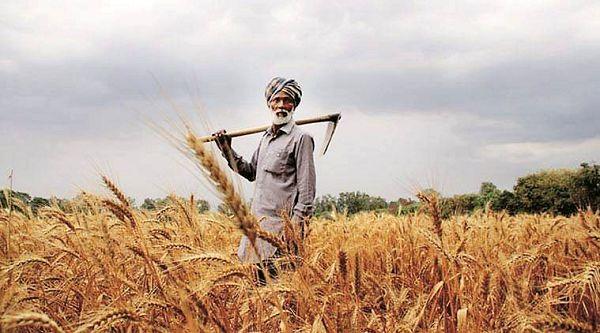 تقویت صادرات محصولات کشاورزی راهکاری برای افزایش درآمد کشاورزان