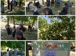 برگزاری کارگاه آموزشی شناسایی و کنترل آفات و بیماریهای درختان میوه