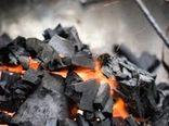 رشد ۱۶۲ درصدی کشفیات زغال در چهارمحال و بختیاری