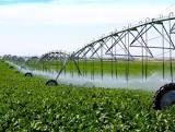 تجهیز ۵۶ هزار هکتار از اراضی کشاورزی استان زنجان به سیستم آبیاری تحت فشار
