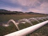 ادعای مصرف 90درصدی آب در بخش کشاورزی، انحراف افکار عمومی است