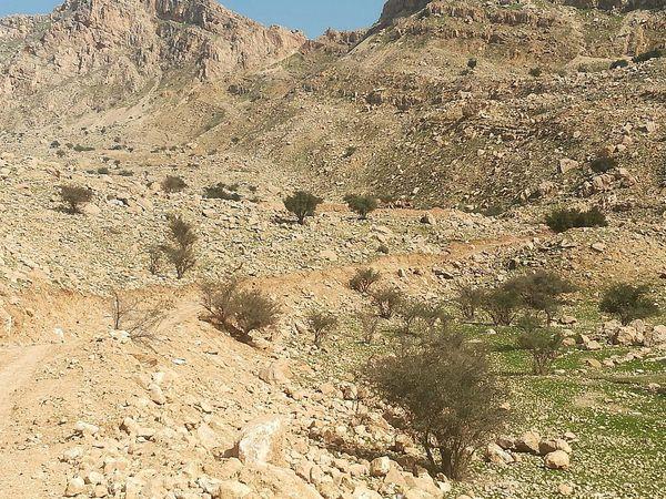 ویلاسازی در منطقه حفاظتشده خائیز غیر قانونی است