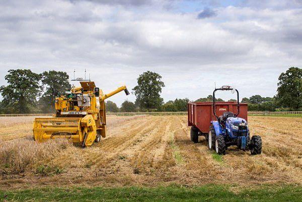 توسعه فعالیتهای کشاورزی در صدر ثبت تعاونیها