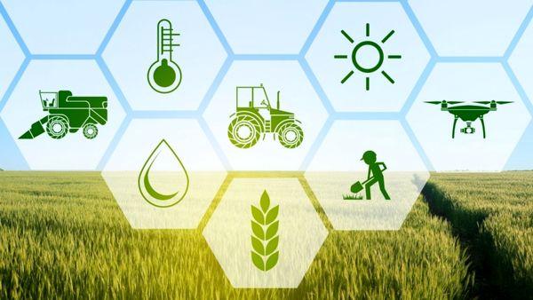 بررسی کشاورزی علمی و دقیق و نقش آن در توسعه کشاورزی