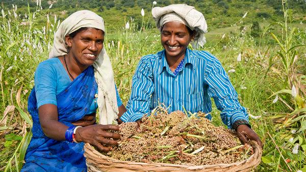 کشاورزی هوشمند راه حلی برای مبارزه با خشکسالی