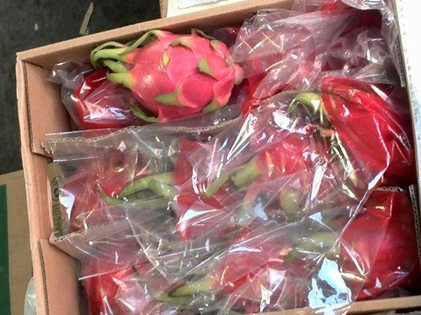 فعالیت سایت فروش میوه قاچاق متوقف شد
