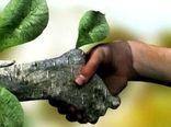 همیاران طبیعت یاوران افتخاری برای منابع طبیعی هستند