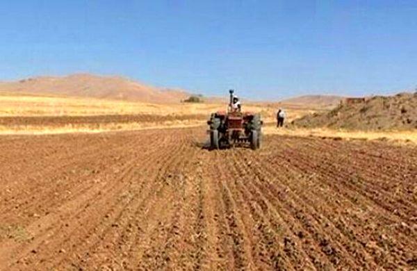 ۱۱ هزار تن بذر با آغاز کشت گندم در بوشهر تامین شد