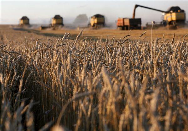 مثبت شدن تراز تجاری بخش کشاورزی کردستان در دوران تحریم