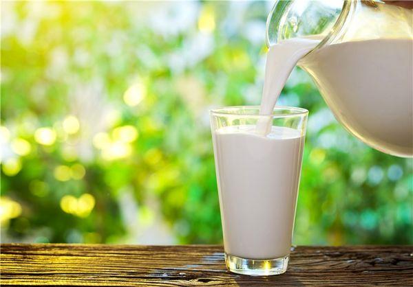 صادرات یک میلیون و 800 هزار دلاری شیر و انواع فرآوردههای لبنی از زنجان