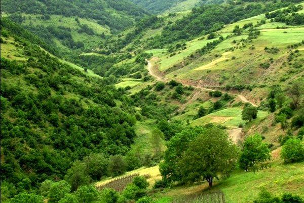 7 میلیارد ریال برای حفاظت از منابع طبیعی آذربایجان غربی اختصاص یافت