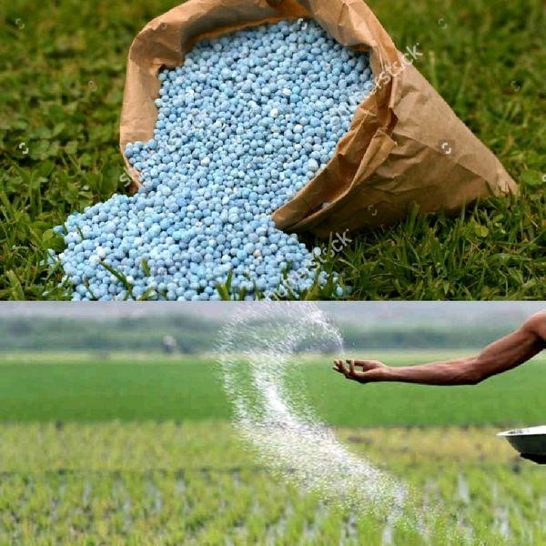 زمانبندی مشخص در کودهی موجب افزایش اثربخشی در کیفیت برنج است
