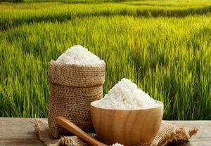 افزایش تولید محصولات کشاورزی بهویژه برنج