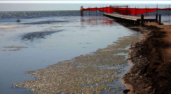 نمکزدایی در مقصد پیششرط انتقال آب خزر به سمنان است