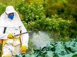 پایگاه میزان مجاز باقیمانده سموم در محصولات کشاورزی ایجاد شد/پیوستن ایران به جمع کشورهای دارنده MRL ملی