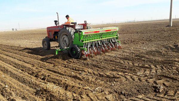 آغاز کاشت محصول گندم در شهرستان دهلران