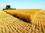 بهبود وضعیت کشاورزان در دولت تدبیر و امید