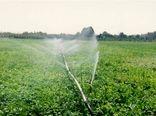 بهرهوری منابع آبی با توسعه نوسازی شبکههای آبیاری