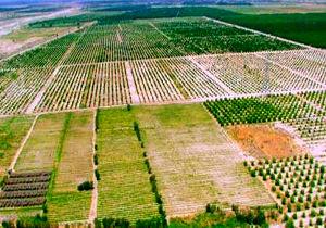 آغاز طرح کاداستر اراضی کشاورزی در شهربن