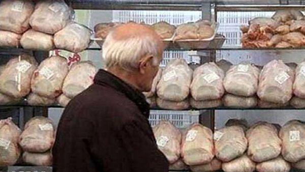 کاهش قیمت مرغ، با توزیع مرغ منجمد