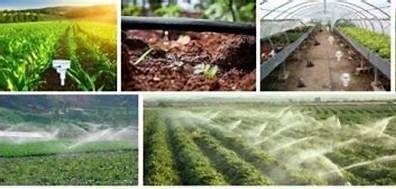 بهره برداری از 25 پروژه بخش کشاورزی استان البرز در هفته دولت
