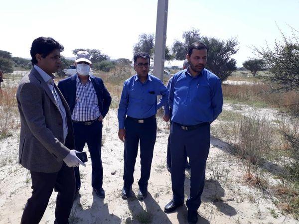 مبارزه با آفت ملخ صحرایی در 17 هزار و 500 هکتار اراضی پنج استان جنوبی کشور