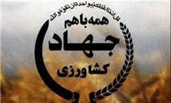 جامعه امروز برای اصلاح امور نیازمند تفکر جهادی است