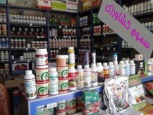 فعالیت ۲۸۶ فروشگاه مجاز سموم در گیلان